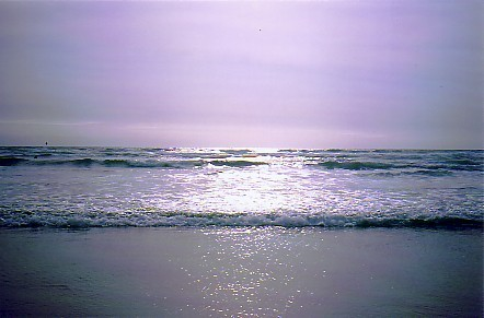 natur-hav-nz